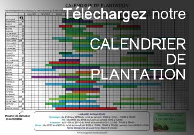 Téléchargez notre calendrier de plantation